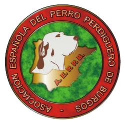 Asociación Española del Perro Perdiguero de Burgos (AEPPB)